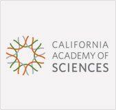 california-12